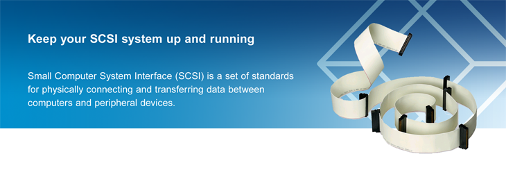 Small Computer System Interface (SCSI) is a set of standards